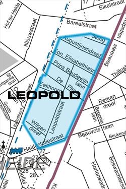 BIN-Leopold